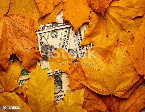 istock dollar banknotes under fallen leaves, closeup, top view 994128806