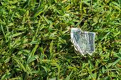 istock US Dollar Bill in Grass 482660781