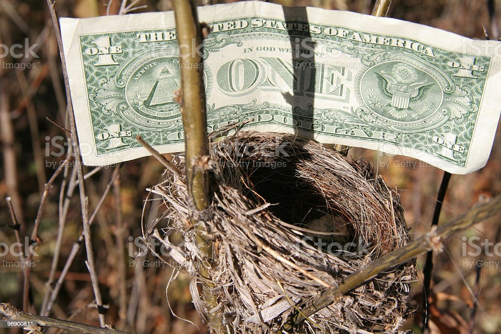 Dollar for the Nest royalty-free stock photo