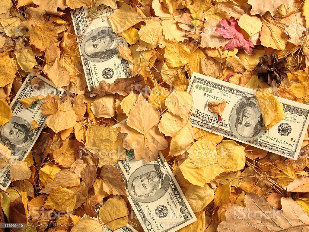 Dollar Litter II stock photo