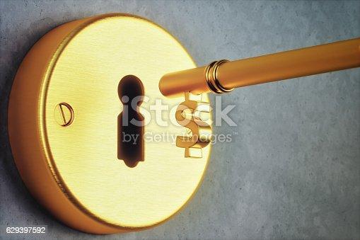 Dollar shaped golden key and key hole.