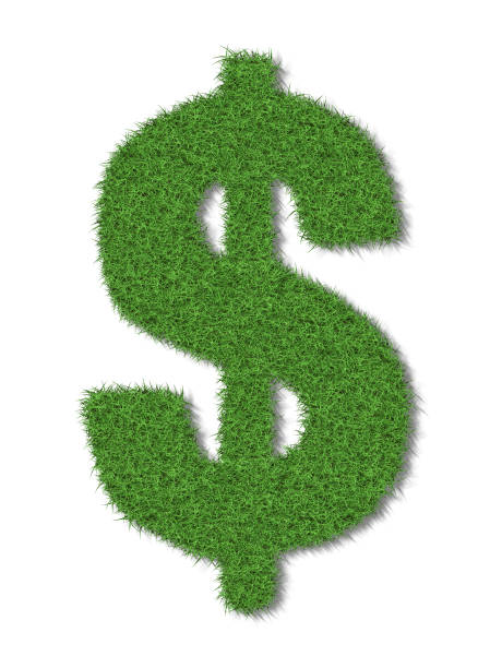 A dollar sign in lush green grass on a white background stock photo