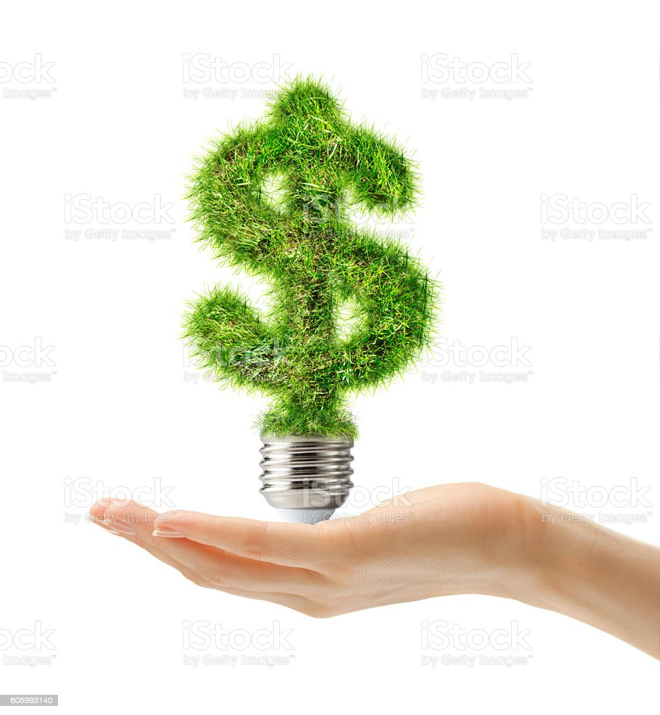 Dollar sign made of grass as bulb in female hand stock photo