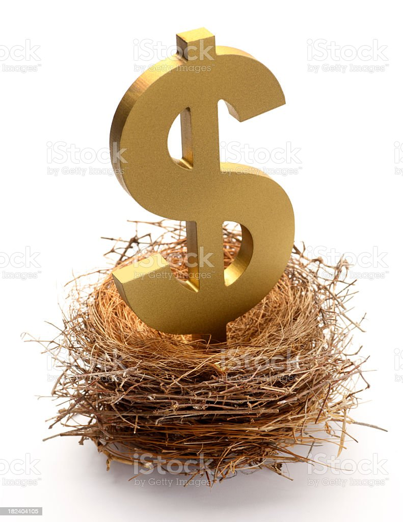 Dollar sign sitting in a bird's nest royalty-free stock photo