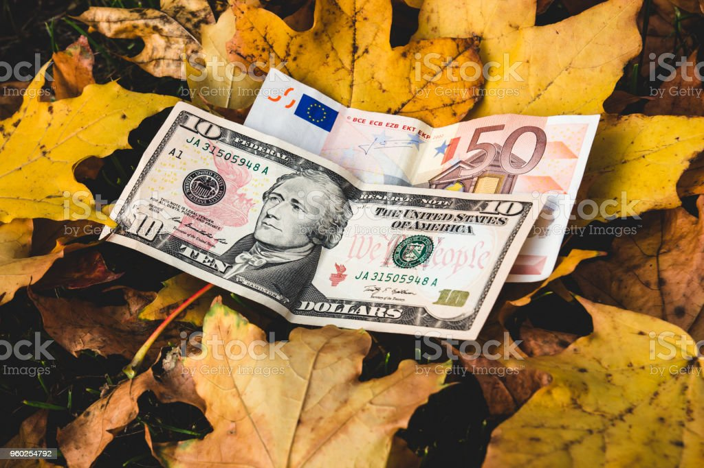Dollars And Euros Lie On A Yellow Fallen Autumn Leaf Concept Of Reducing The Price Euro Dollar