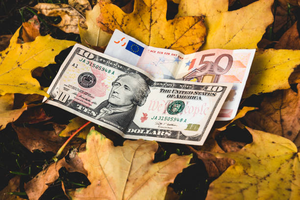 Dollars And Euros Lie On A Yellow Fallen Autumn Leaf Concept Of Reducing The Price