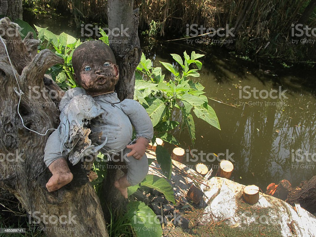 Dolls of Xochimilco stock photo