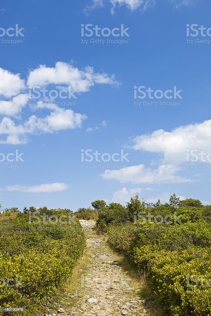 Dolly Sods Wilderness In West Virginia, USA royalty-free stock photo