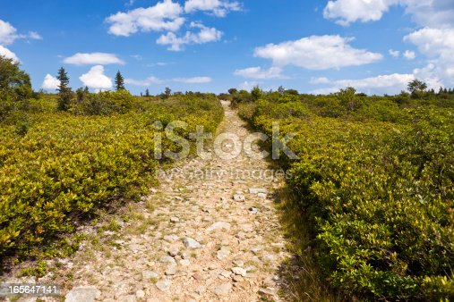 istock Dolly Sods Wilderness In West Virginia, USA 165647141