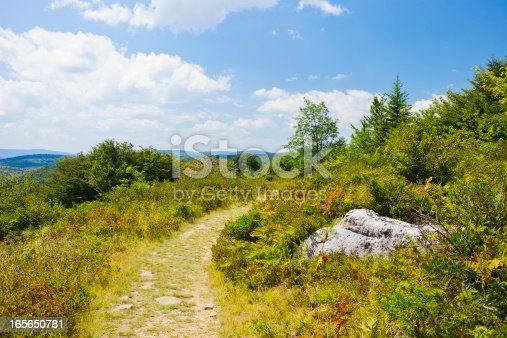 istock Dolly Sods Wilderness In West Virginia, USA 165650781