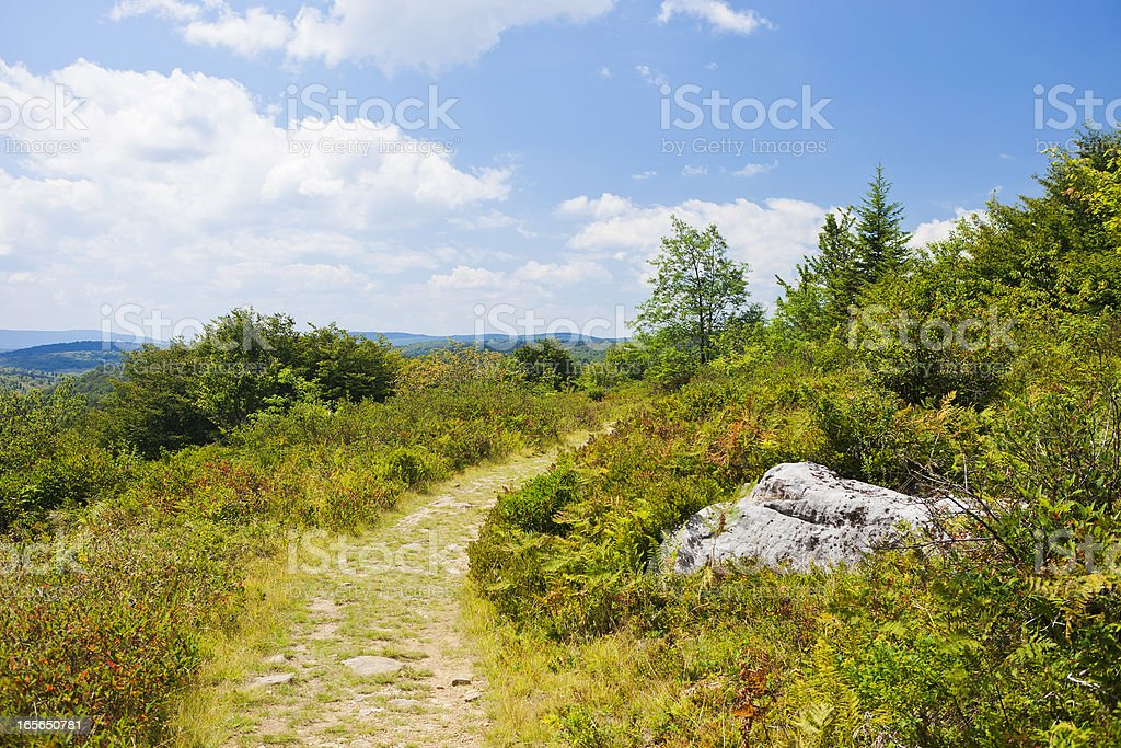 Dolly Sods Wilderness In West Virginia, USA stock photo