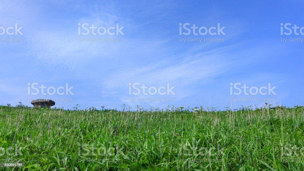 Dolmen on the Grassland stock photo