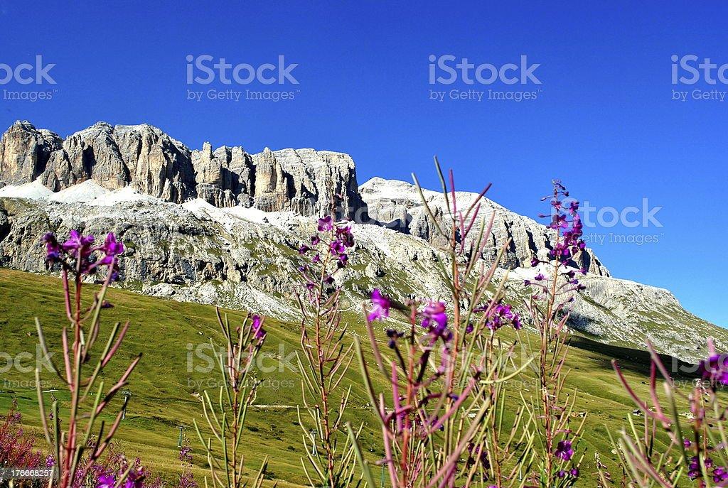 Dolomites, Italy royalty-free stock photo