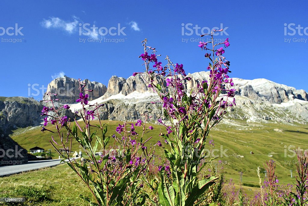 Dolomites, Italy royalty-free stock photo