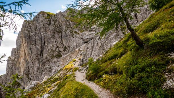 Dolomites mountains south tyrol - Croda Rossa stock photo