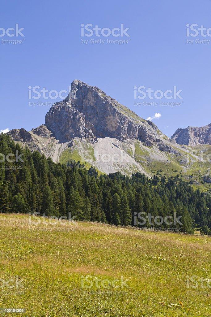 Dolomites - San Nicolo Valley  in summer (Pozza di Fassa) stock photo