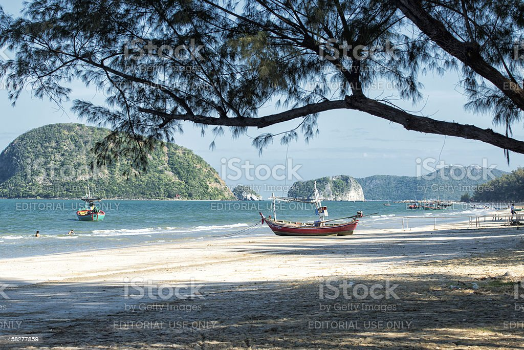 Dolphin Bay royalty-free stock photo
