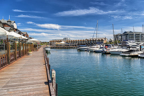 dolphin quay - western australia stock pictures, royalty-free photos & images