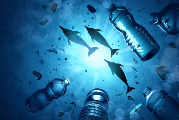 Dolphins Swimming In A Ocean Polluted With Plastics stock photo