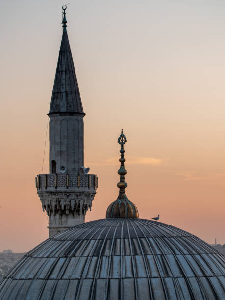 dome and tower of Istanbul mosque dome and tower of Istanbul mosque at sunset minaret stock pictures, royalty-free photos & images