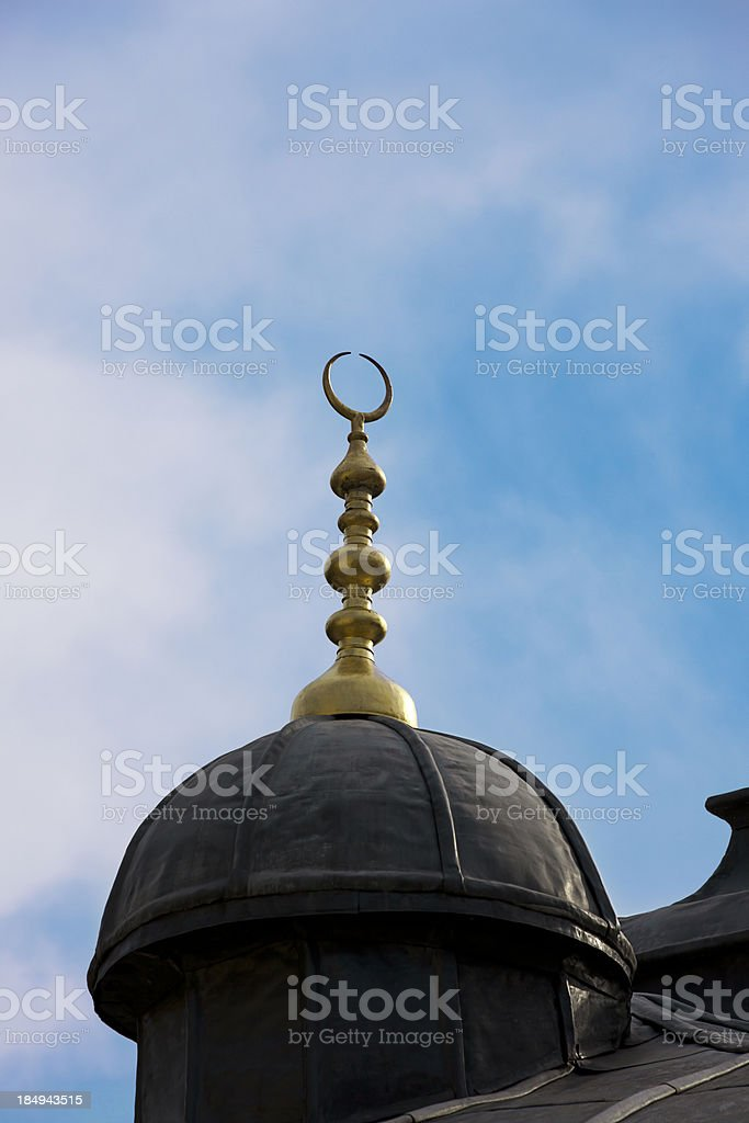 Dome of Istanbul royalty-free stock photo