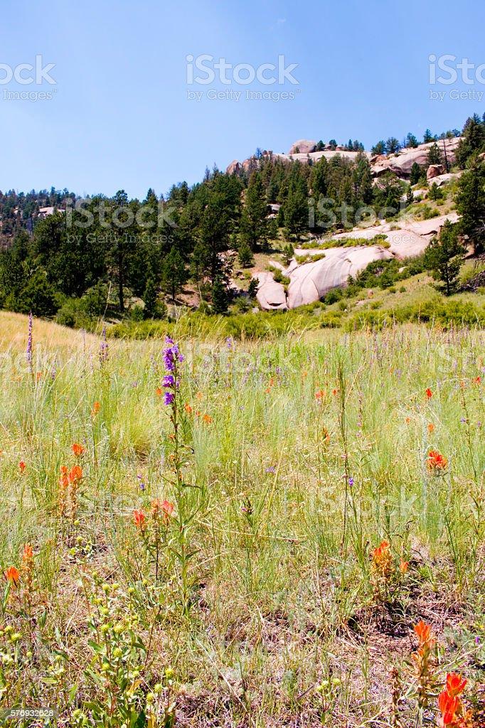 Dome Rock State Wildlife Area stock photo