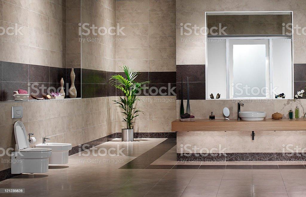 Domestic bathroom royalty-free stock photo