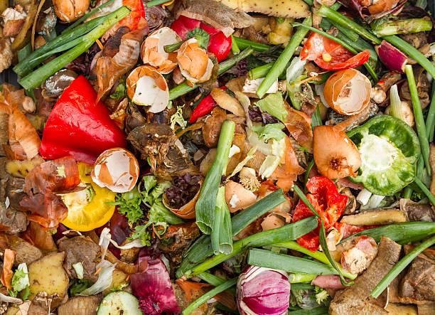 nationaux compost minier - détritus photos et images de collection