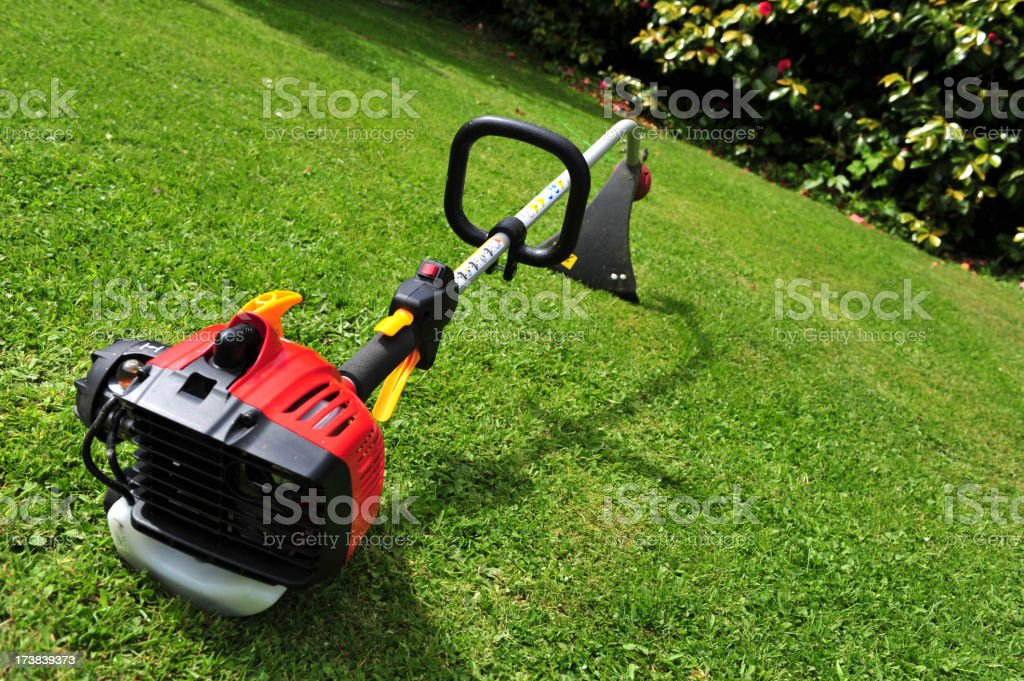 Domestic garden strimmer - differential focus  sharpness on trigger stock photo