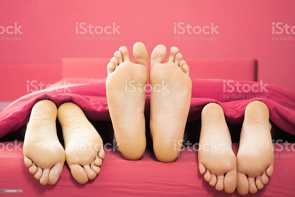 domestic life stock photo