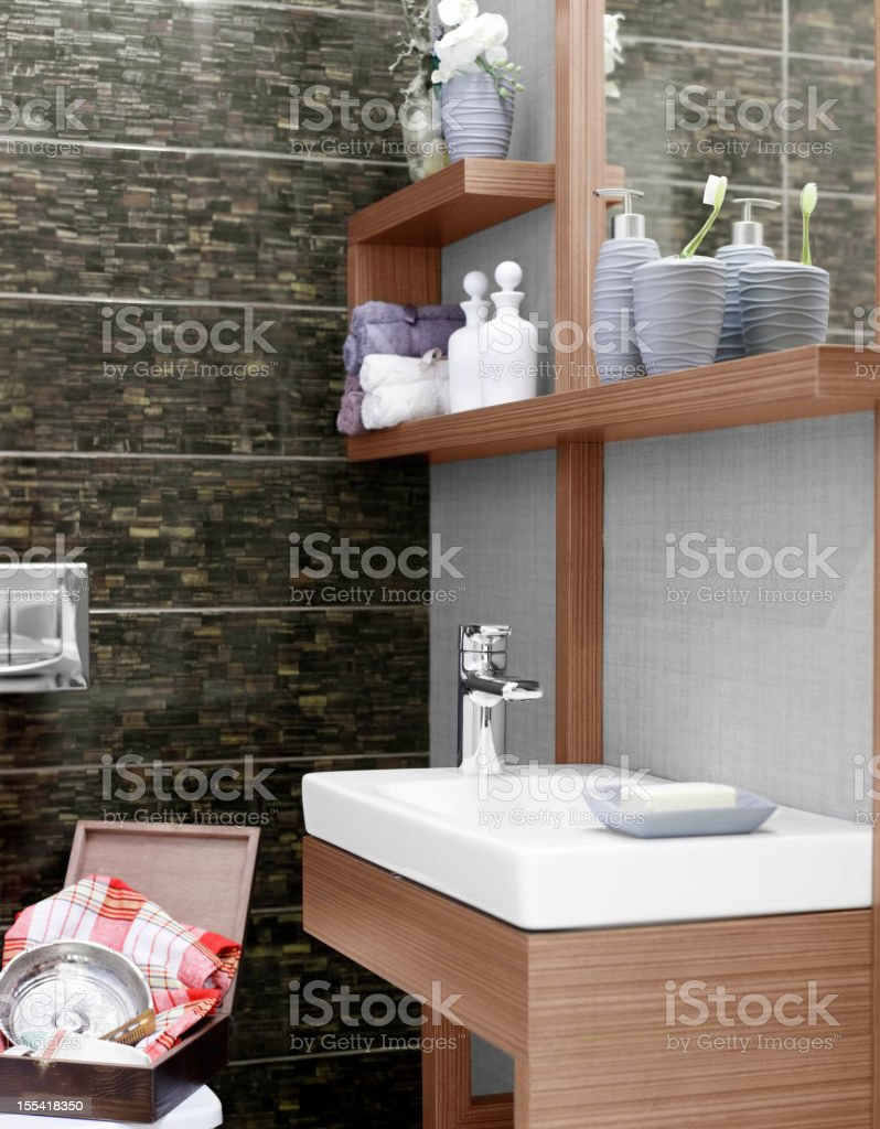 Domestic new style bathroom in the house royalty-free stock photo