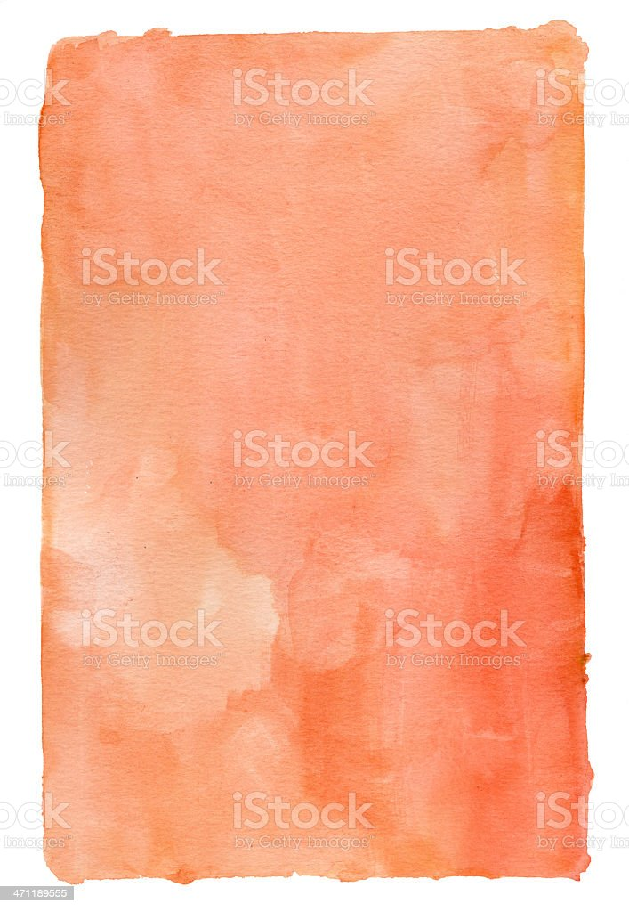 Domestic Peach Red Frame royalty-free stock photo