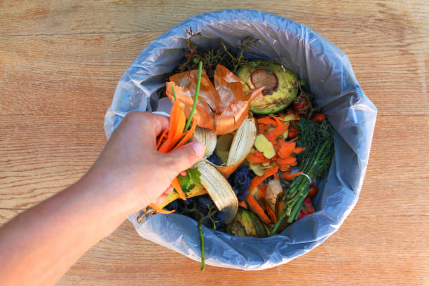 Domestic waste for compost from fruits and vegetables. Woman  throws garbage. stock photo