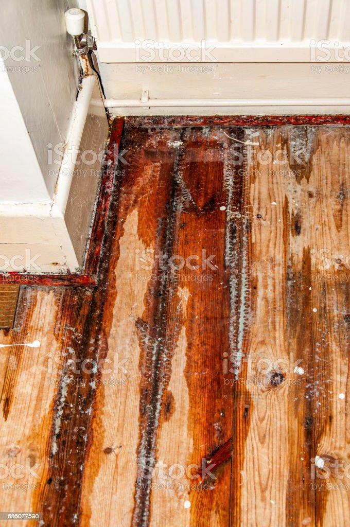Domestic water leak from a radiator – Foto