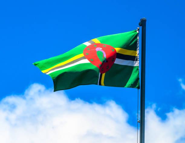 Dominica-Flagge – Foto
