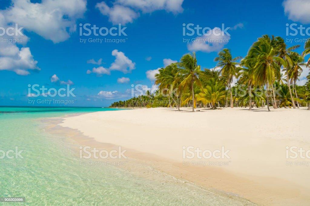 Dominikanische Republik-Traumstrand Lizenzfreies stock-foto