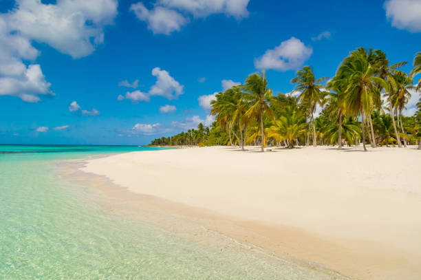 Dominikanische Republik-Traumstrand – Foto