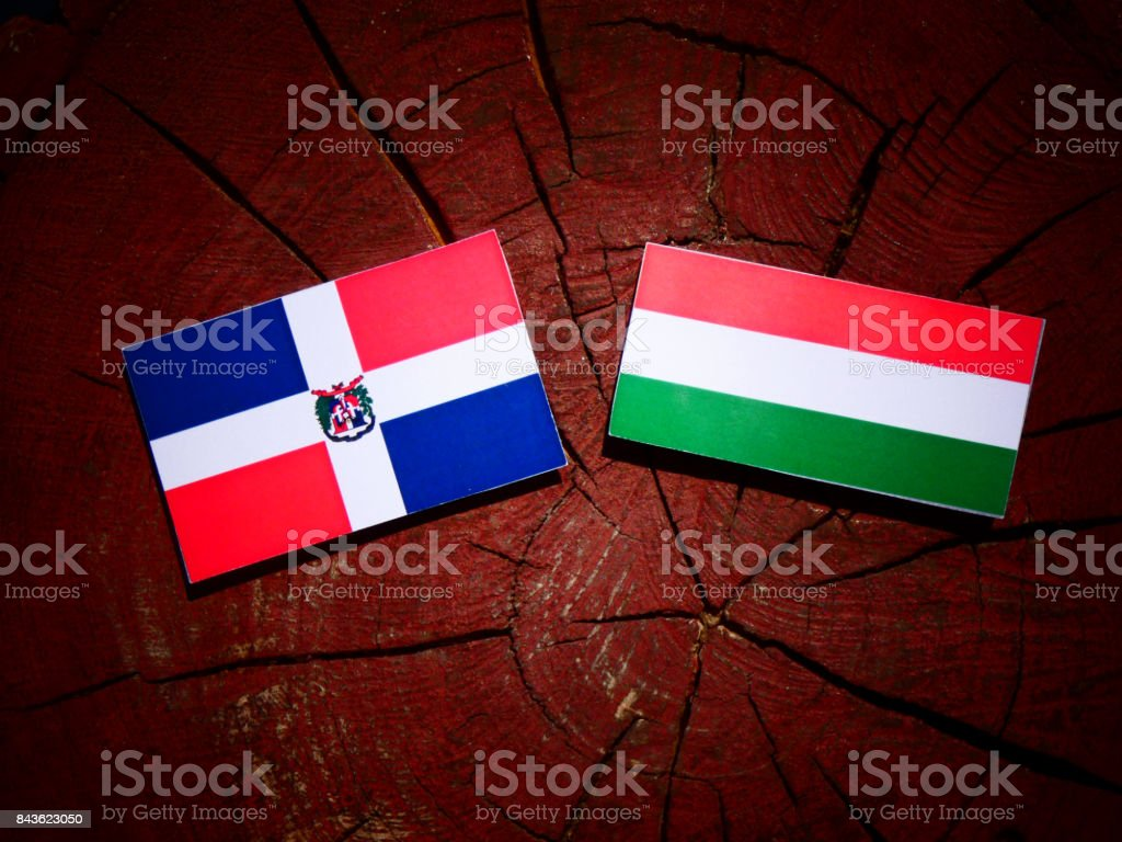 Dominican Republic flag with Hungarian flag on a tree stump isolated stock photo