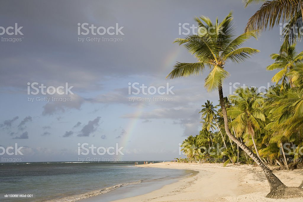 Dominican Republic, Puerto Plata, rainbow over palm trees on beach photo libre de droits