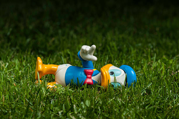 Donald Duck lying on grass Lahti, Finland - June 15, 2013: Donald Duck lying on grass sailor suit stock pictures, royalty-free photos & images