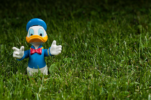 Donald Duck opened arms on green grass Lahti, Finland - June 15, 2013: Donald Duck opened arms on green grass sailor suit stock pictures, royalty-free photos & images