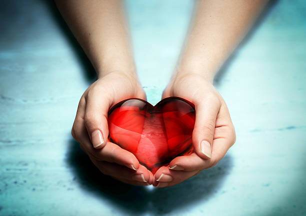 donate your heart stock photo