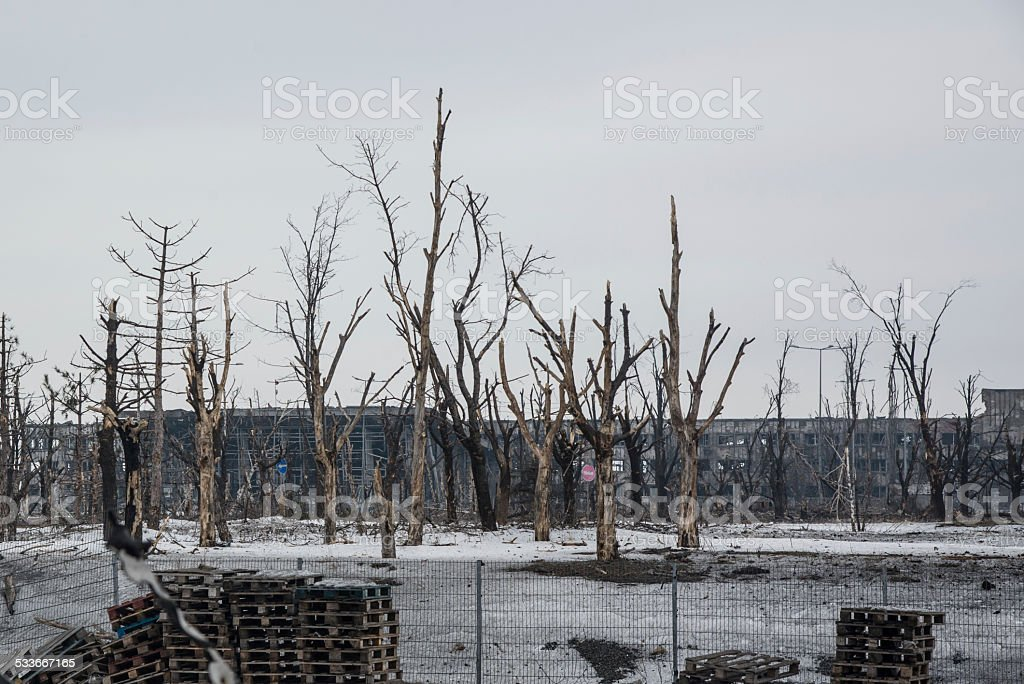 Donetsk Airport: New Terminal and artillery damaged trees stock photo