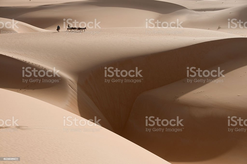 donkey caravan in sahara desert with large chasm of sand stock photo