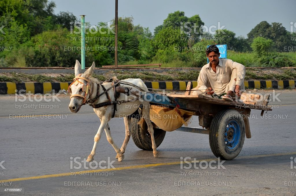 Donkey cart with driver on Pakistani highway stock photo