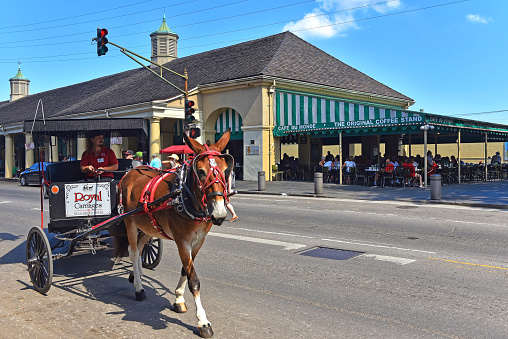 New Orleans, LA, USA - September 26, 2019: Donkey drawn carriage crosses Decatur St by Cafe Du Monde which was established in 1862.