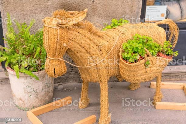 Donkey figurine with baskets of flowers picture id1223152926?b=1&k=6&m=1223152926&s=612x612&h=u7gevedfvcj t fcqebqvmlwhuy aqtiny9ufz09p3g=