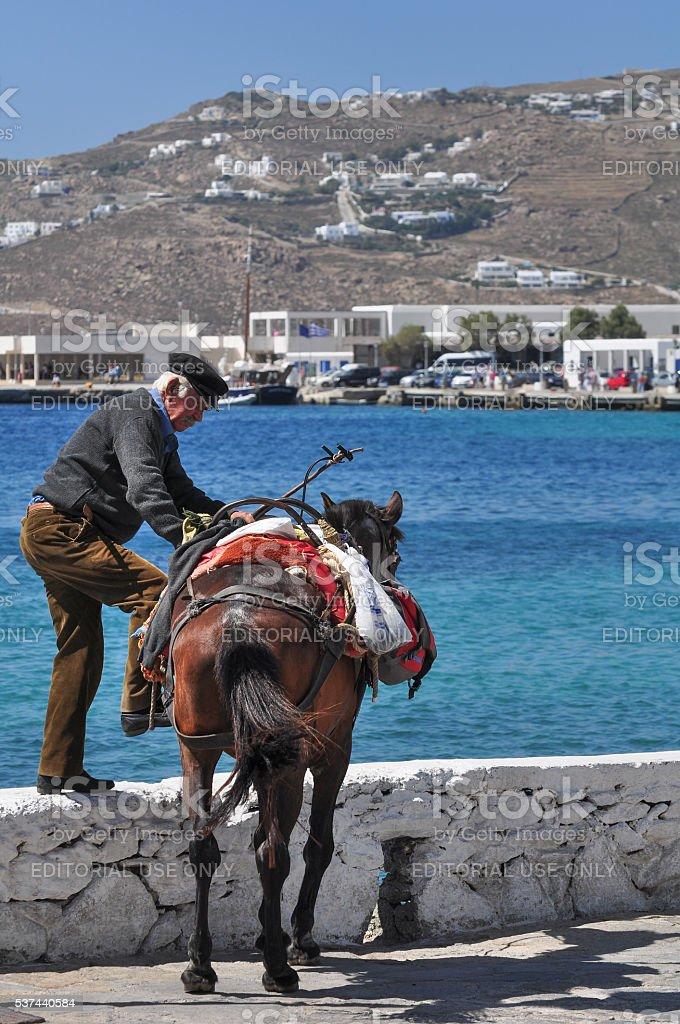 Esel, Mykonos, Griechenland – Foto