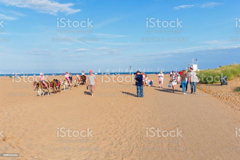 donkey rides on the beach stock photo