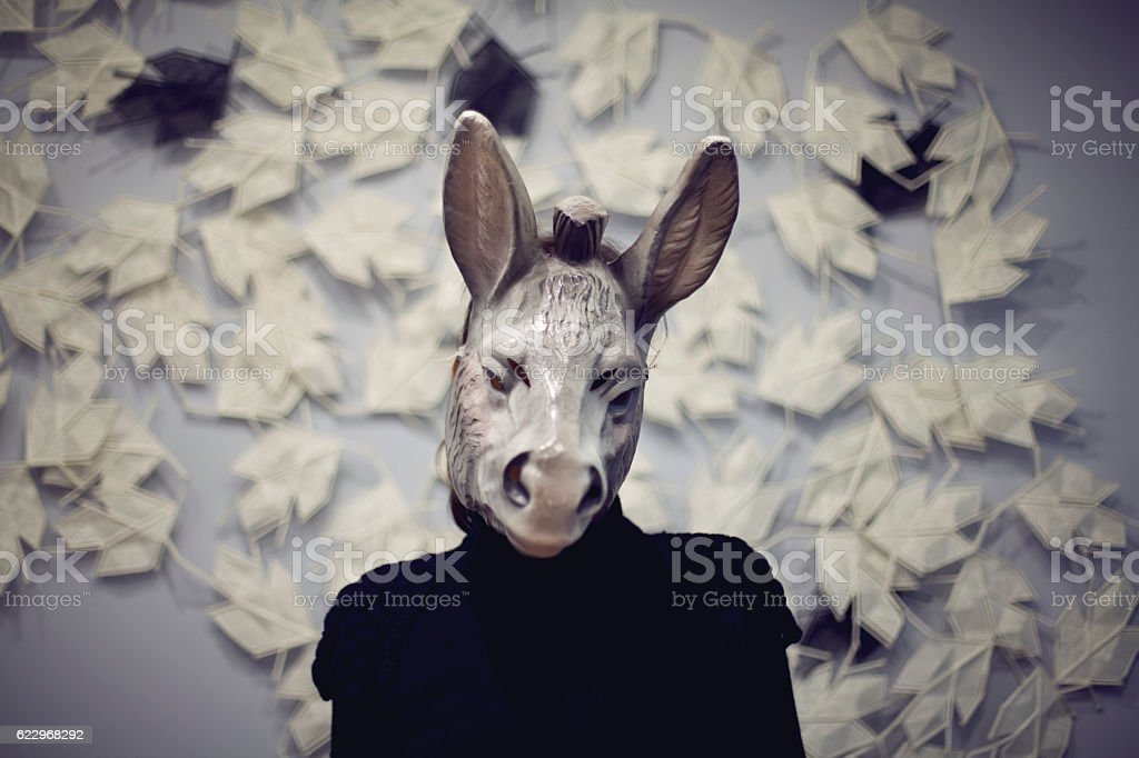 donkey selfie stock photo